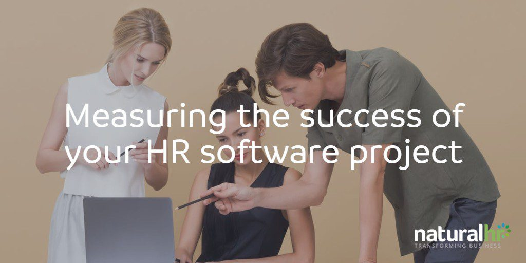 Employees measuring the success of their HR software project