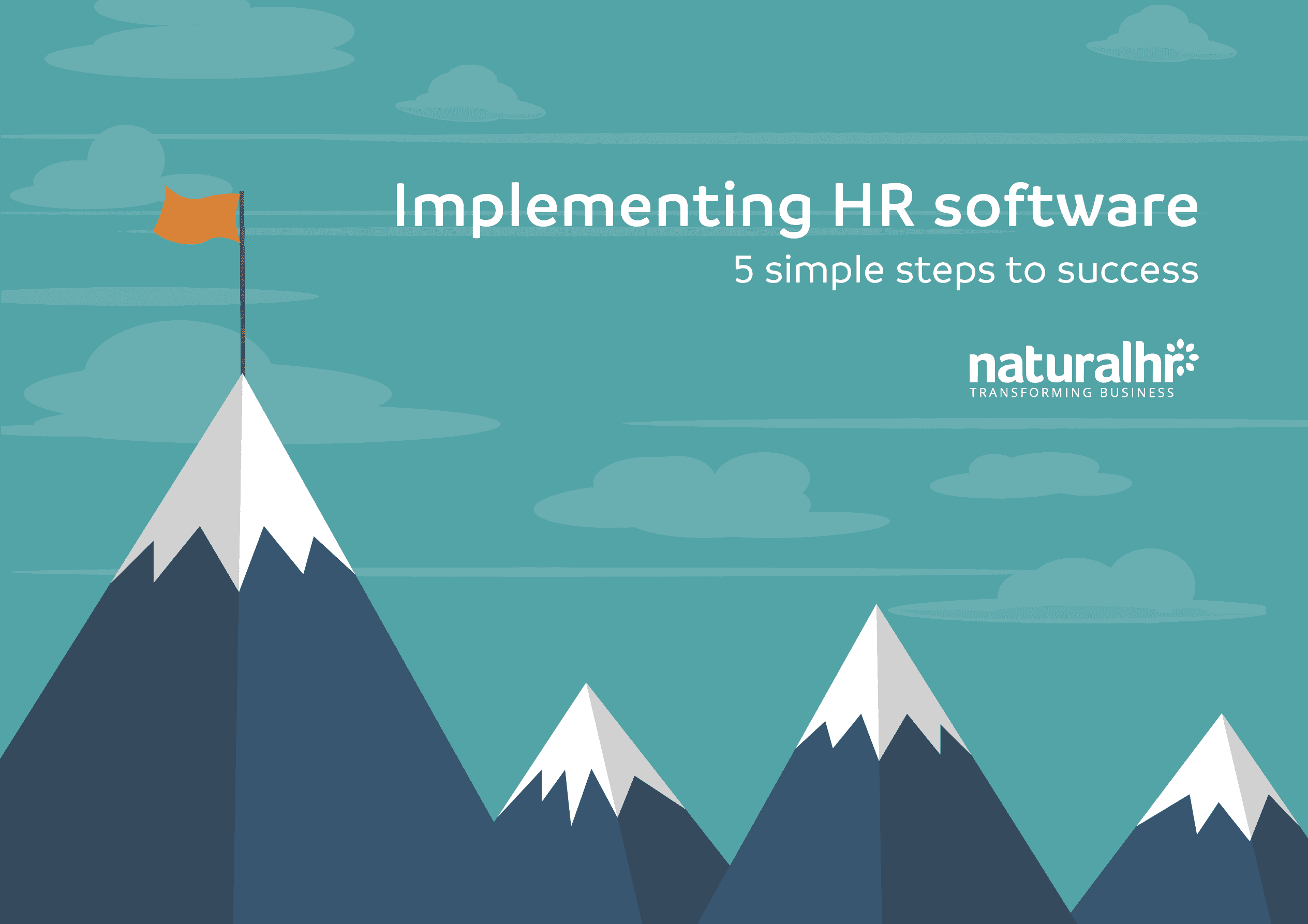 implementing hr software guide